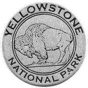 Yellowstone bison token