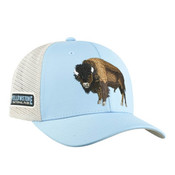 blue bison Yellowstone hat